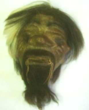 Shrunken Head REAL SKIN & HAIR Jivaro Indian Tsantsa - Large